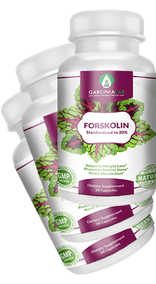 3 Pack Premium Forskolin Extract 100% Pure 20% Standardized