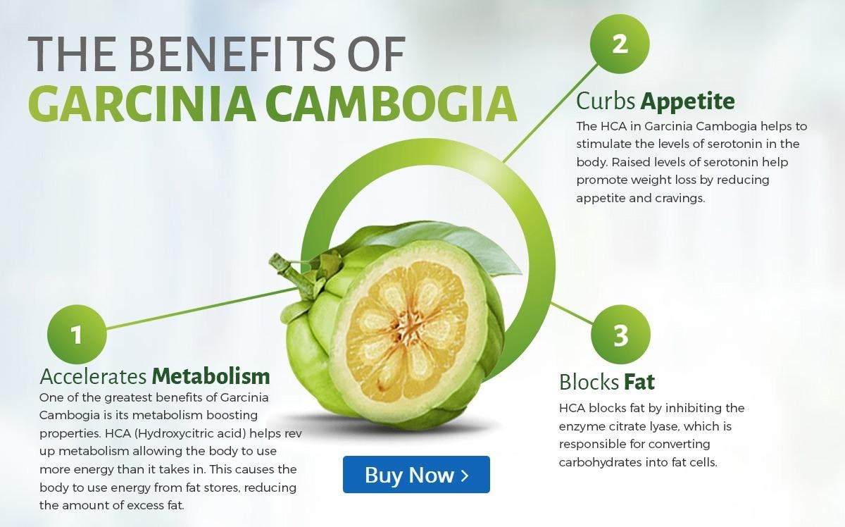 benefits-of-garcinia-cambogia